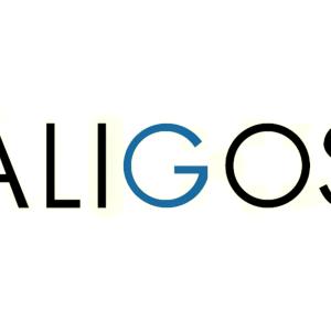 Stock ALGS logo