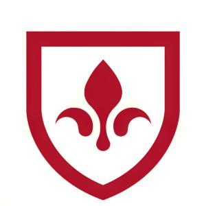 Stock BLU logo