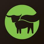 Stock BYND logo