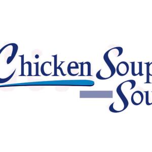 Stock CSSEN logo