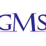 Stock GMS logo