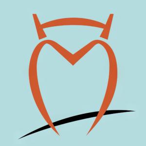 Stock HMN logo