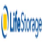 Stock LSI logo