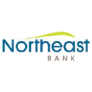 Stock NBN logo
