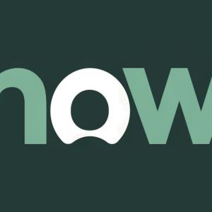 Stock NOW logo