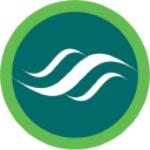NSVGF Stock Logo