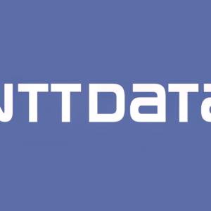 Stock NTDTY logo