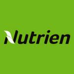 Stock NTR logo