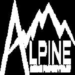 Stock PINE logo
