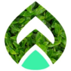 Stock PQEFF logo