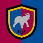 SILEF Stock Logo