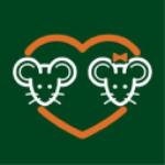 Stock SNES logo