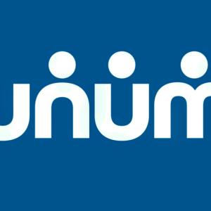 Stock UNM logo