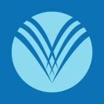 Stock VAPO logo